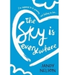 Jandy Nelson, The Sky Is Everywhere