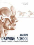 , Anatomy Drawing School